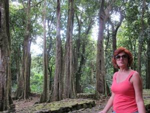 Ruínas do Templo Polinésio