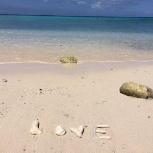 Foto: Lúcia Mialski, com os corais das areias de Curaçao