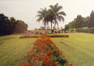 A beleza colorida do Cemitério. Foto de folder da cidade.